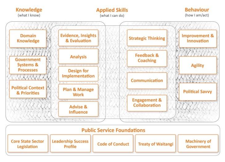 NZ policy skills